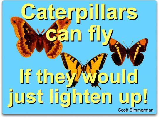 caterpillars and change