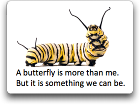 Caterpillar butterflies are more than me simple poem