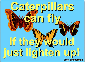 quote on butterflies by Scott Simmerman