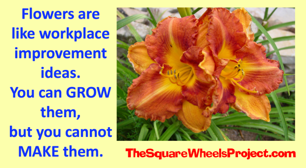 Square Wheels thoughts on business improvement